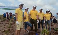 Vietnam siembra manglares en enfrentamiento al cambio climático