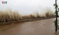 El tifón Doksuri causa pérdidas humanas y materiales en las provincias centrovietnamitas