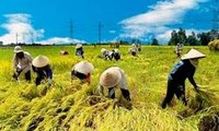 Criteria adjustment to make new rural development more efficient