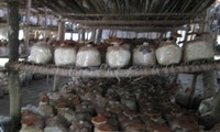 Mushroom growing – new production model in Kim Bang, Ha Nam province