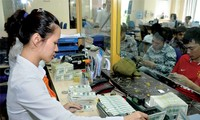 2013 – a successful year for Vietnam's monetary policy management