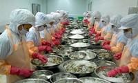 VASEP files claim against US's anti-dumping duties on shrimp