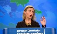 EU chief protests arms supplies for Kiev