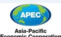 Hosting 2017 APEC Forum a priority of Vietnam's foreign policy