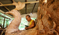 Vocational training at a Buddhist pagoda