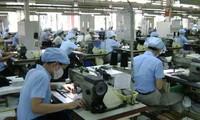 Vietnamese enterprises seek opportunities in Czech market