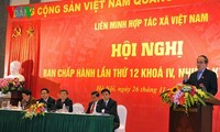 New-style cooperatives, the key to Vietnam's agricultural restructuring