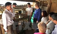 Ireland helps Ha Giang improve infrastructure