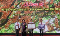 Phong Dien district builds new rural area
