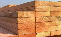 Export opportunities for Vietnam's timber processing