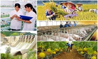 Vietnam's agriculture identifies challenges for development in 2017