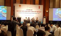 Vietnam 2017 energy outlook report released