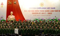 Vietnam War Veterans' Association closes 6th National Congress