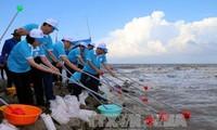 「ベトナムの海と島週間2017」に応える式典