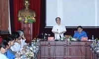 越南青年知识分子关心发展全面教育培训