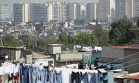 越南-墨西哥交流扶贫经验