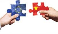 2015年:越南-欧盟关系迈出新的发展步伐