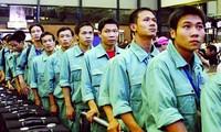今年越南劳务输出市场出现可喜信号