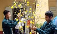 庆和省:通过电视连线直播节目向长沙岛县军民拜年