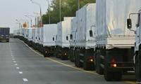 俄罗斯第8批人道主义援助车队进入乌东部