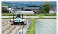 越南实现农业可持续发展
