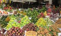 越南水果出口展望