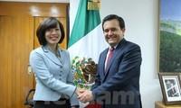墨西哥将推动尽早成立越南-墨西哥工业与贸易合作委员会