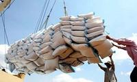 越南在菲律宾国际招标中获得30万吨大米供应权