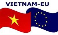 """越南参加比利时""""新欧洲人""""联欢活动"""