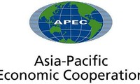 办好2017年亚太经合组织活动:越南外交工作到2020年的重点内容