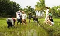 世界银行协助越南革新农业与教育