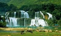 《板约瀑布地区旅游资源共同开发和保护协定》第四轮谈判在北京举行