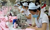 推动越南纺织品服装和皮革鞋类两个行业的工会活动