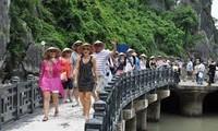 庆和省接待的中国游客增长4倍