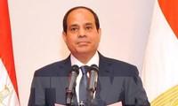 埃及推进与东盟的多领域合作