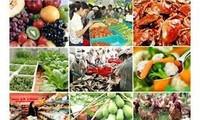 越南将参加莫斯科国际食品展