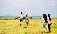 《绿地黄花》——表现越南乡村童年生活的成功之作