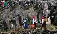 同文岩石高原原始雄伟的美