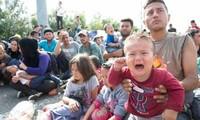 """移民问题:联合国谴责捷克将非法移民拘押在""""有辱人格""""的环境里"""