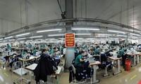 越南与欧盟签署自贸协定将给企业带来机会