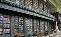 越南第一座意大利语专题图书馆正式投入使用