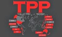 美国启动《跨太平洋伙伴关系协定》批准程序