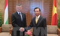匈牙利国会代表团访问岘港市