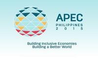 出席APEC 23有助于越南提升在多边外交中的地位