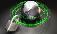 越南国会表决通过《网络信息安全法》