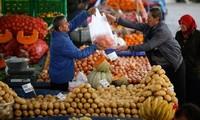 土耳其警告俄罗斯对其实施贸易制裁将影响俄农民
