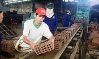 越南在融入国际背景下建设新型合作社
