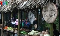 越南春节乡村集市在河内举行
