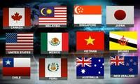 《跨太平洋伙伴关系协定》将带动越南经济强劲增长