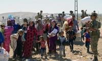 欧盟与土耳其在解决移民问题中面对挑战